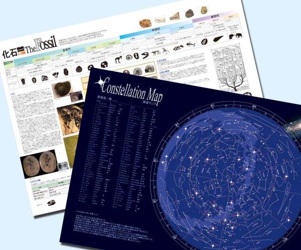 画像1: 学習ポスターインテリアセットB 化石、星座  (1)